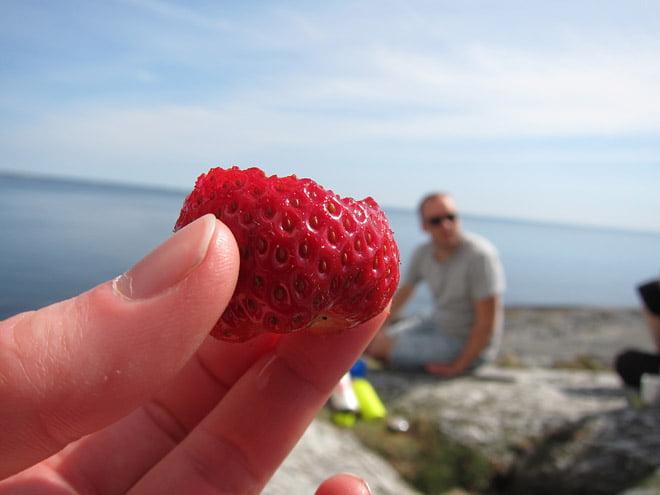 Jordgubbar och melon var helt rätt i värmen :)