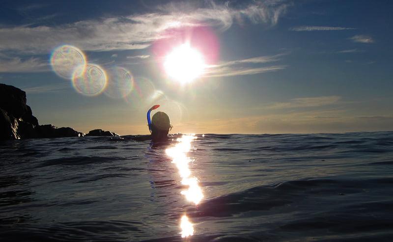 Snorkeldags i finväder