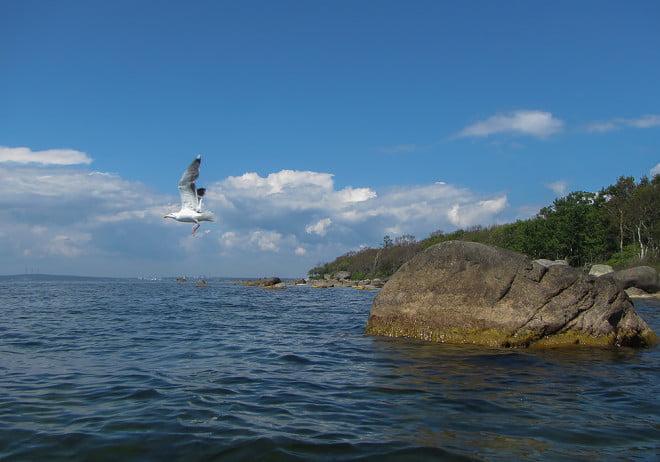 Pia försöker färgmatcha himmel och ö utanför Tärnö