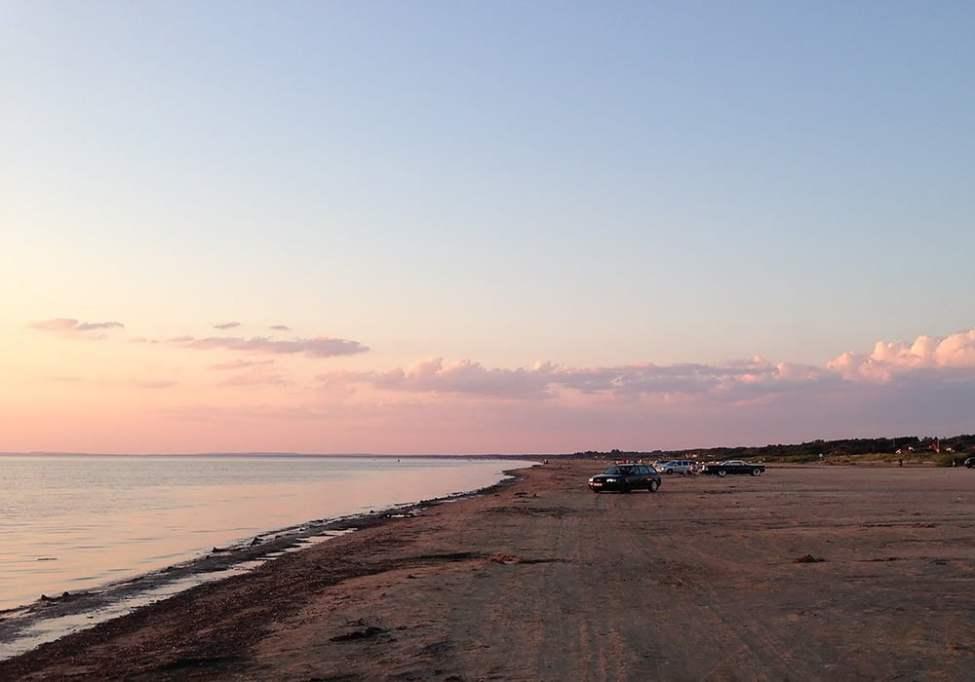 Lång sandstrand längs med Laholmsbukten