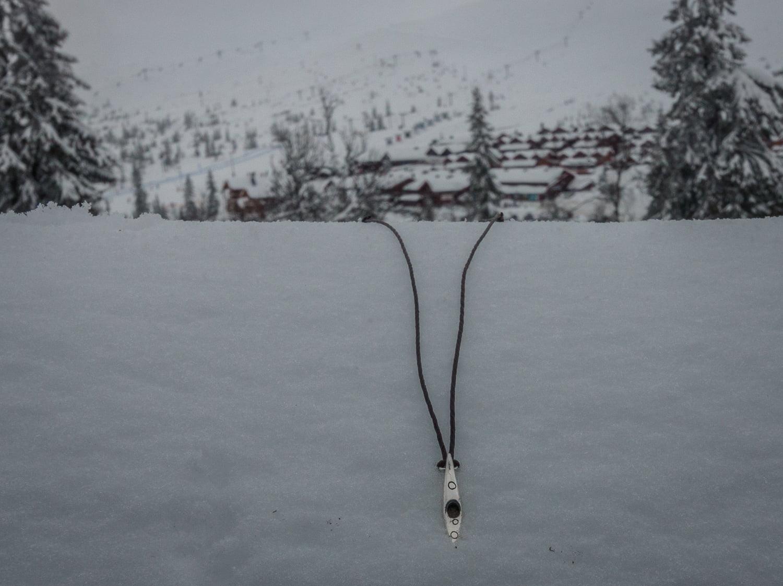 Silverkajak på snöutfykt