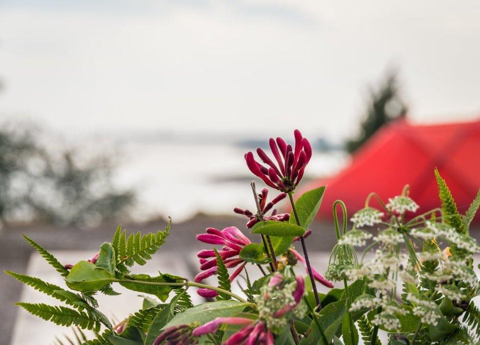 Blommande skärgård