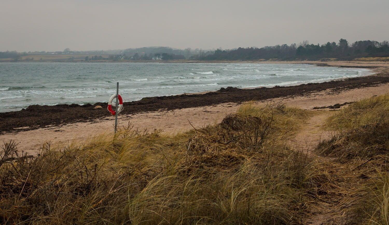 Stranden precis norr om hamnen