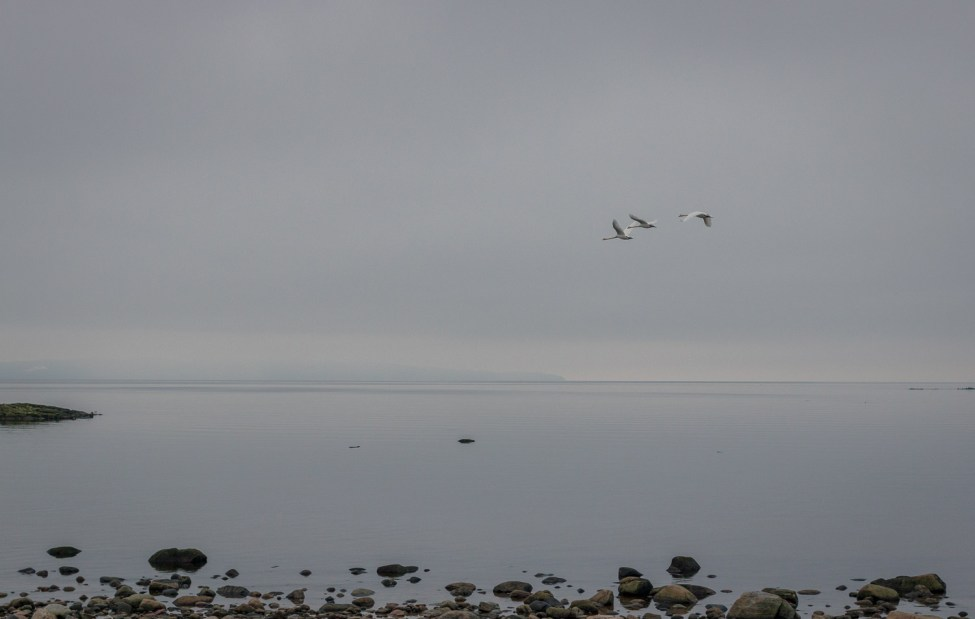 Disig vy mot Kullaberg över Skälderviken