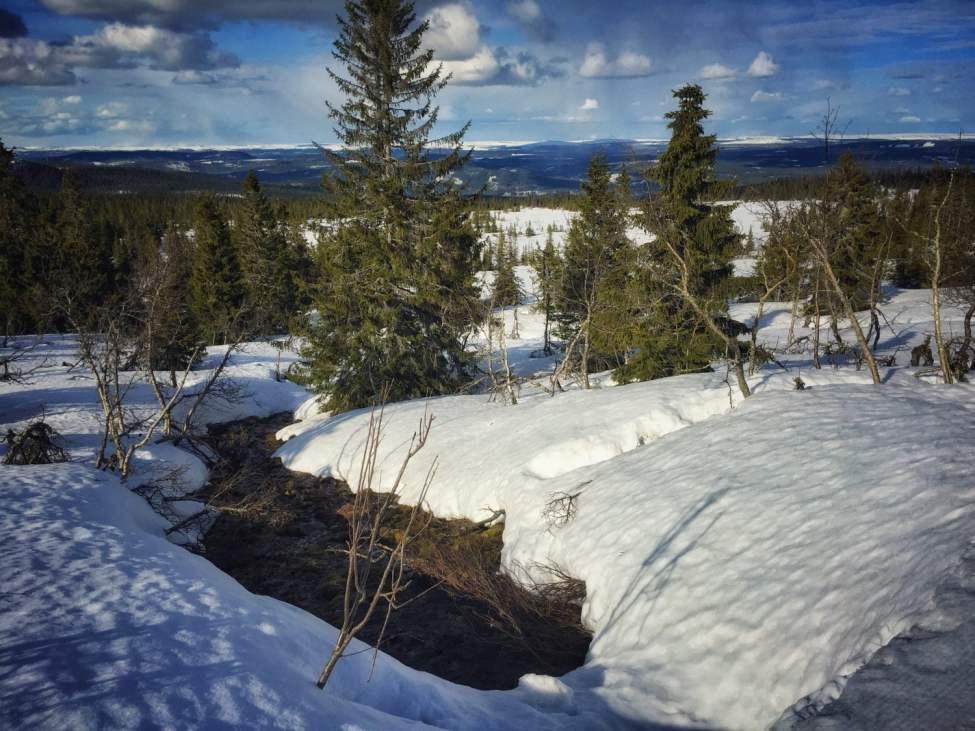 Bäckarna börjar kika fram under snötäcket här och där