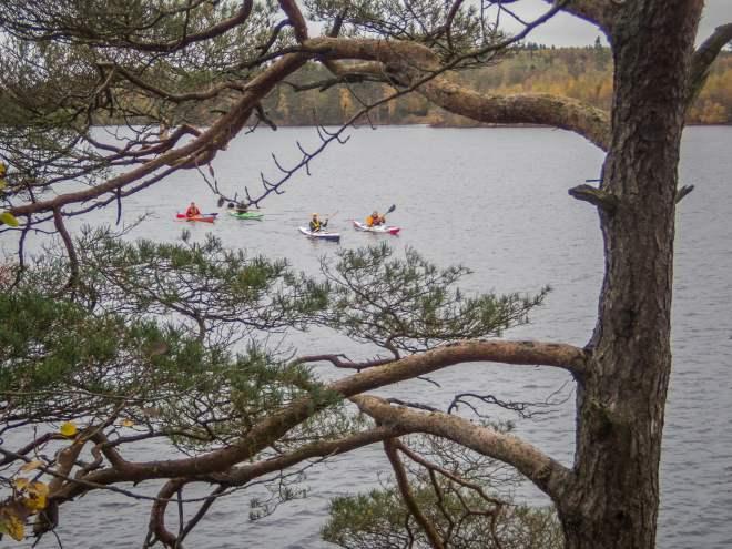En Knäckebröhultare, en Halmstadsbo, En Hässleholmare och en Helsingborgare