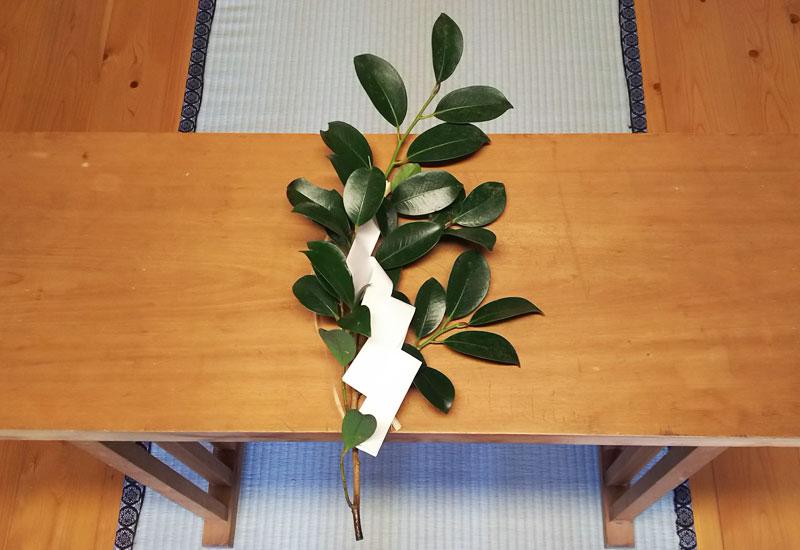 榊の種類 玉串など神社で使われる榊について   安産祈願 子寶 ...