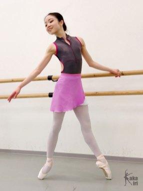 Ballettrock ombré rosa weiß kakakiri handgenäht