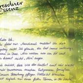 Dresdner Essenz - Anzeige Wellness in der Gala - created by kakoii Berlin