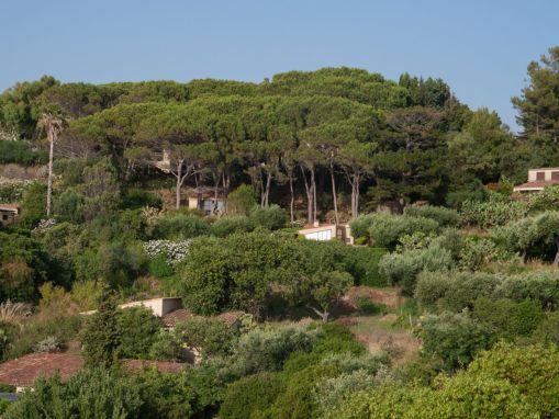 Blick auf Casa Angiolone