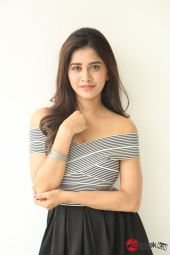 Actress Nabha Natesh Photos (8)