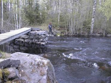 Kalastusta Naiskoskella