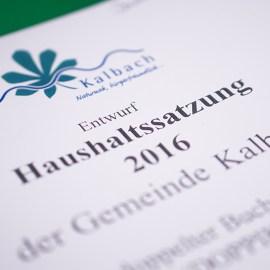 """Neuer Wiki-Beitrag """"Haushaltsplan, Haushaltssatzung, Jahresabschluss, Doppik"""" ist online"""