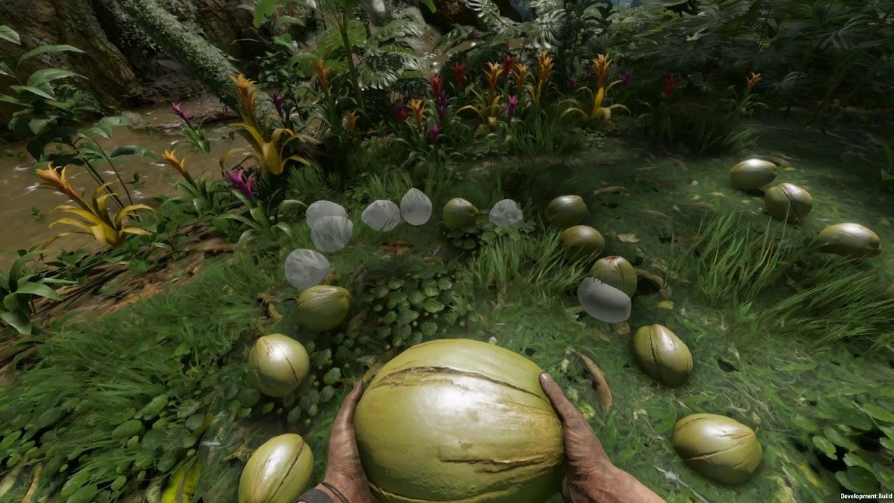 Creepy Jar представиха своята първа игра – Green Hell –
