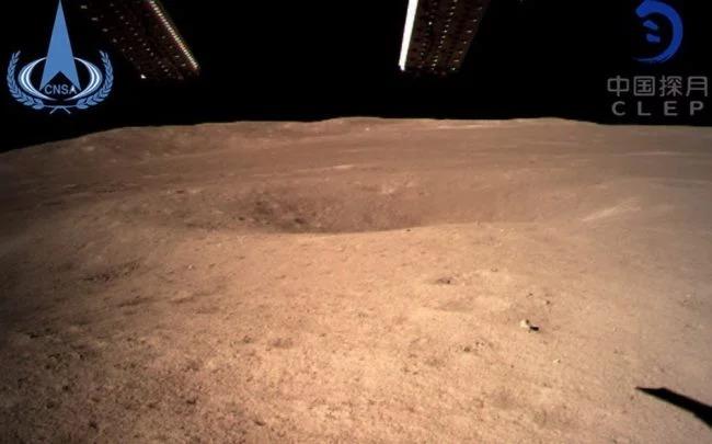 Снимка: Земните растения покълнаха на Луната
