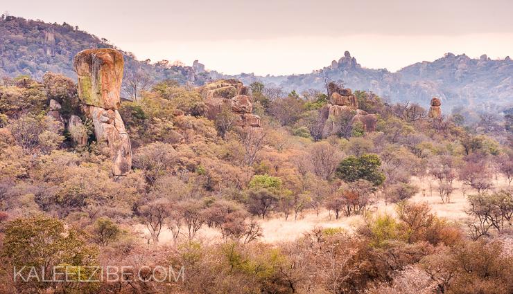 20080804-_ND33913 Matopos National Park-Zimbabwe-Africa-KaleelZibe.com