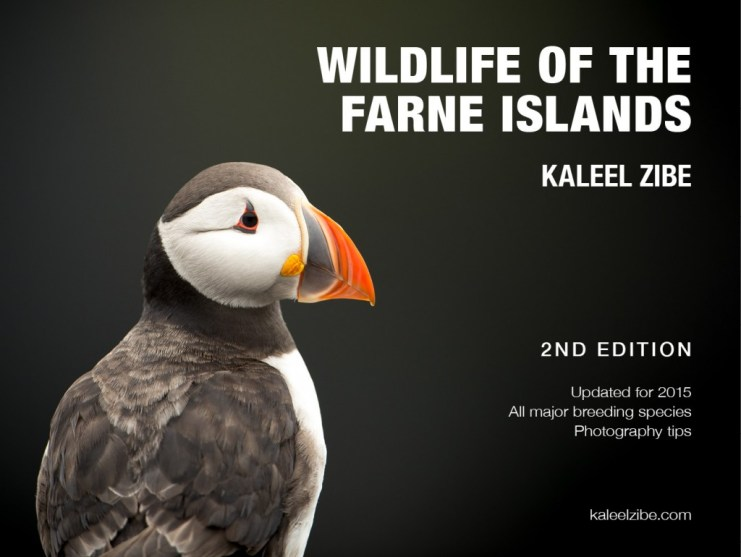 Wildlife of the Farne Islands 2nd edition front cover 150dpi