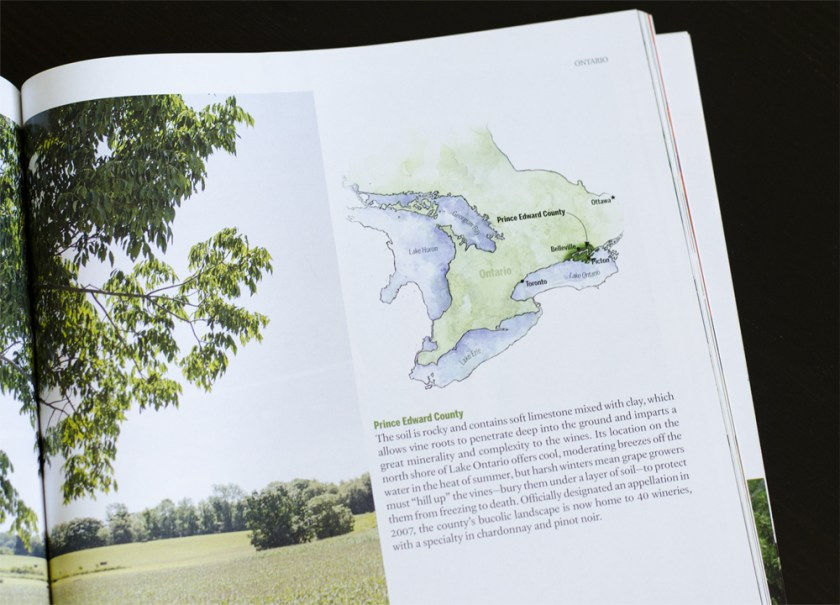 Watercolour map of Prince Edward County in Ontario for Maclean's Wine in Canada Magazine.