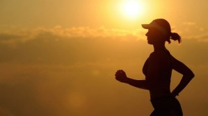 Interview – Fitness: What Exactly Is a Runner's High?