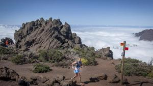 Summertime Sweat: Trail running is the workout your summer is missing