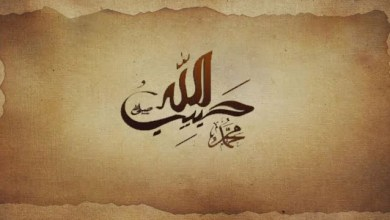 Photo of حبیب الله – قسمت ۳۰ (قسمت آخر)