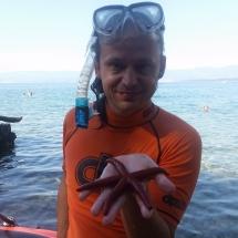 étoile de mer trouvé par Mathieu