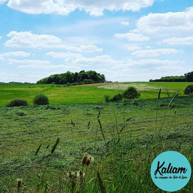 Landscape in Luxembourg kaliamvoyages paysage IVV Bertrange