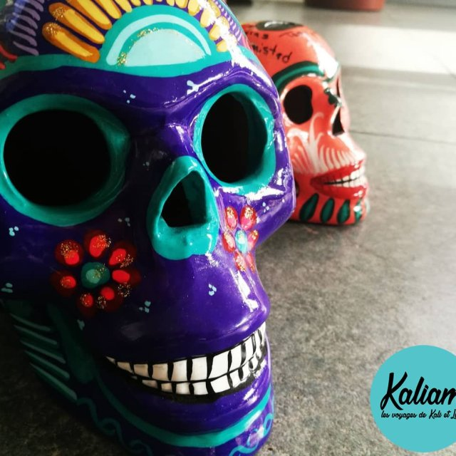 I love these skulls Jadore ces crnes