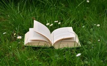 10 conseils pour réussir la mise en page d'un roman