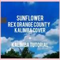 SUNFLOWER - REX ORANGE COUNTY