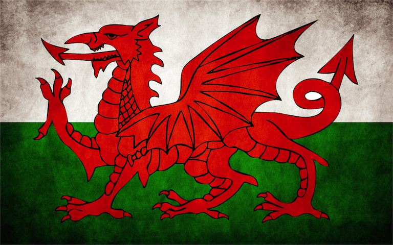 Longest Name Ever - Welsh Flag