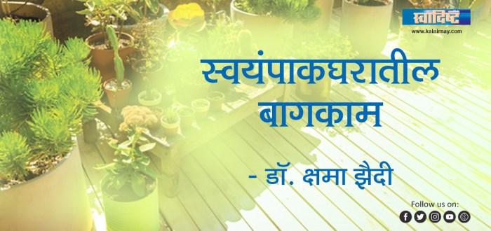 बाग | Kitchen Garden | Dr Shama Zaidi | kitchen garden at home | terrace kitchen garden | organic kitchen garden | rooftop kitchen garden