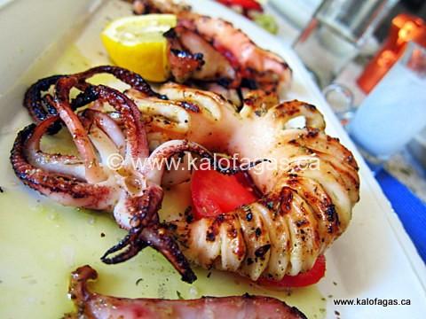 Grilled Calamari and Cumin