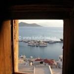 Greek Food Gazette 11/02/2011