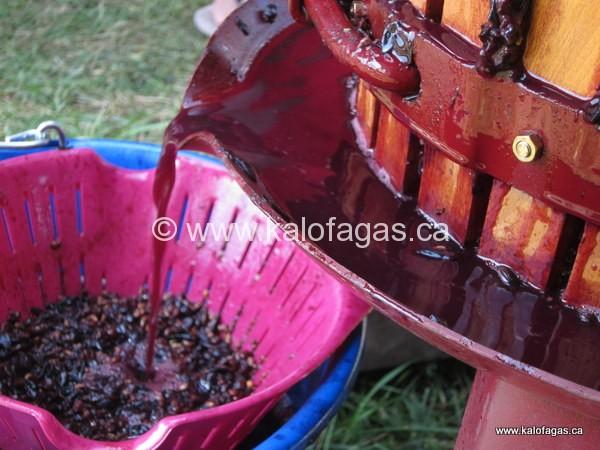Greek Food Gazette 16/09/2011