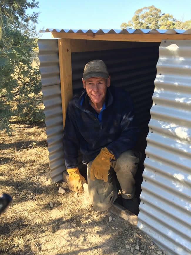Phil in new wombat enclosure