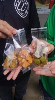 鎌倉野菜クッキー第1弾