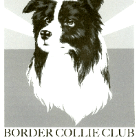 Border Collie Club of Arizona