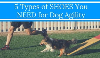5 Types of Shoes You NEED for Dog Agility