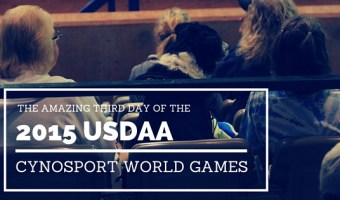 The Amazing Third Day of the 2015 USDAA Cynosport World Games