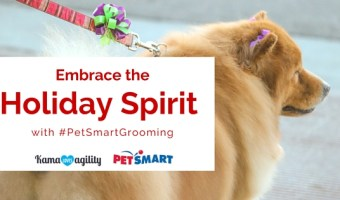 Embrace the Holiday Spirit with #PetSmartGrooming