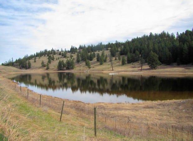 Goose Lake 011r