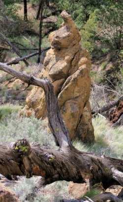 Mara Canyon 018r