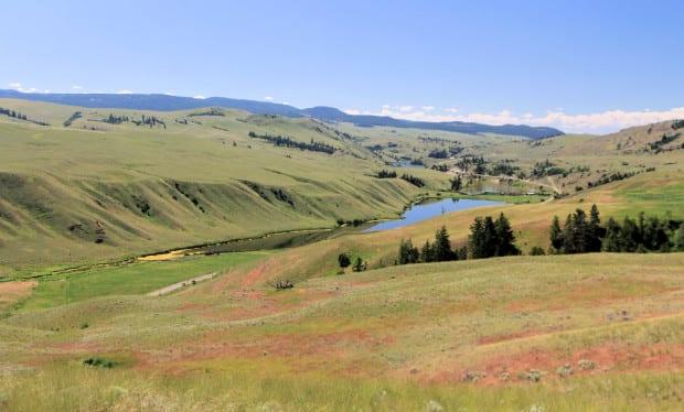 Napier Ranch 027r