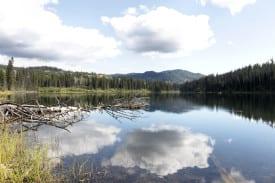 Phinetta Lake