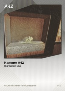 KammerCardA42 (preview)