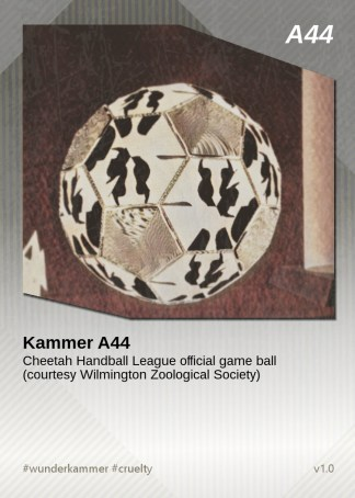 KammerCardA44 (preview)