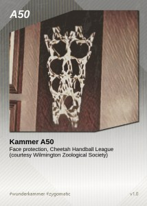 KammerCardA50 (preview)