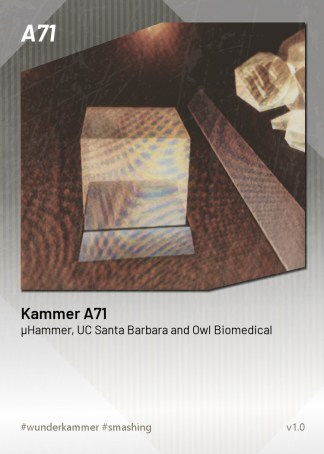 KammerCardA71 (preview)