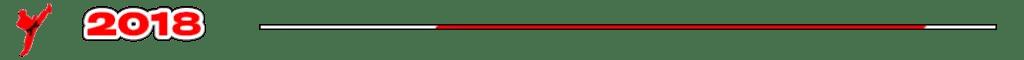 Trenner Grafik - Kampfsportschule Story Jahr 2018